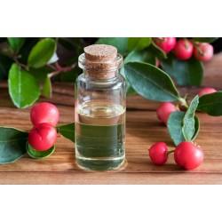 ΑΙΘΕΡΙΟ ΕΛΑΙΟ ΓΩΛΘΕΡΙΑ (Wintergreen essential oil)